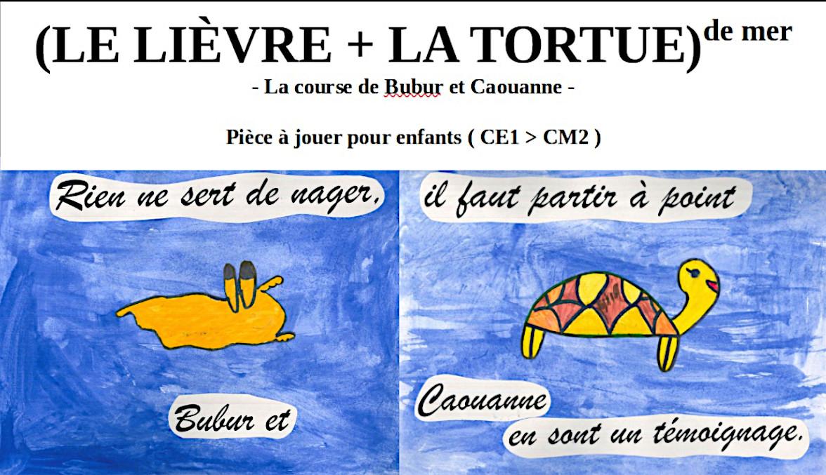 ( LE LIÈVRE + LA TORTUE ) DE MER